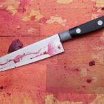 Собутыльница убила двумя ударами ножа